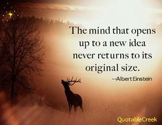 The mind that opens to a new idea never returns to its original size. -Albert Einstein