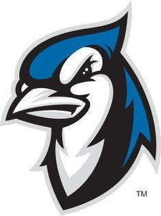 Blue Jays, Elizabethtown College (Elizabethtown, Pennsylvania) Div III, Landmark Conference #BlueJays #ElizabethtownPennsylvania #NCAA (L9681)