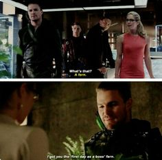 THE LOVE FERN IS BACK<<<ALL HAIL THE FERN OF OUR SHIPS LOVE
