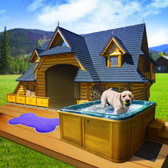The Lodge: Your dog will love to rest and unwind in this soothing retreat. No cats allowed.