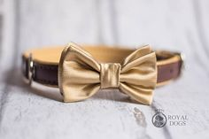 Gold Dog Bow Tie   Wedding Bow Tie   Christmas Bow Tie   Formal Bow Tie   Gift For Pet   Luxury Dog Gift   UK   Bowtie Bow Tie Wedding, Dog Bows, Dog Bandana, Bandanas, Bow Ties, Dog Gifts, Luxury, Formal, Trending Outfits
