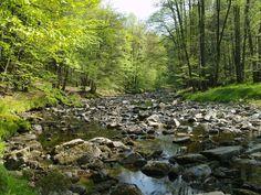 Česko - Meandry řeky Smědé