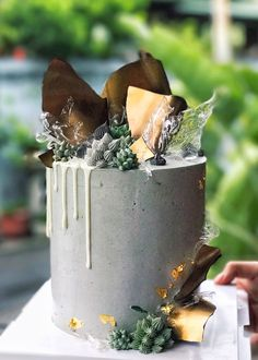 The modern industrial concrete cake is offset by icing succulents and just a hint of white drip and gold flakes. Raymond Tan Square Wedding Cakes, Wedding Cupcakes, Gorgeous Cakes, Pretty Cakes, Concrete Cake, Succulent Wedding Cakes, Succulent Cakes, Modern Cakes, Cake Decorating Techniques