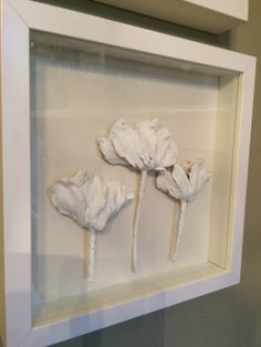 Plaster Dipped Flowers - dried flat and framed in shadow box - good tut