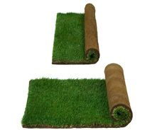lighter than traditional grass and much more absorbent of liquid and odor! Lighter, All Things, Grass, Traditional, Pets, Grasses, Herb, Animals And Pets