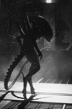 If you want to get out alive, run for your life Alien Vs Predator, Predator Alien, Arte Alien, Alien Art, Giger Alien, Giger Art, Alien 1979, Alien Isolation, Alien Covenant