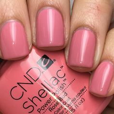 """Nadia on Instagram: """"@cndworld Shellac Rose Bud. I used CND Base Coat, 2 coats of Shellac Rose Bud, and topped off with CND Shellac Xpress5 Top Coat. Cured in the CND LED Lamp."""""""