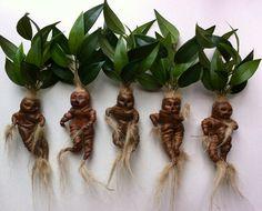 ohhh my goodness gracious! Mandrake Doll Mandragora Figurine Harry Potter by oldcityartmaker, $11.99