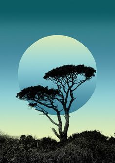 Tree_print_A3_web.jpg