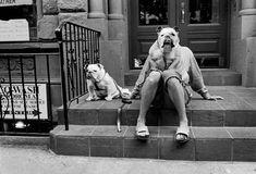 Elliott Erwitt Dogs | The Bull Dog Lady By Elliott Erwitt « Play Cloths Blog