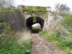 S/D railway bridge between midford and wellow.
