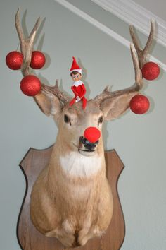 ANGIE - I know the exact deer who could use a little elf. Love this.