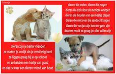 Dieren liefde