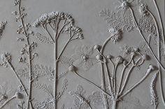 Fossielen zijn meestal razend interessant. Een oude afdruk van een dier of plant, geconserveerd in eeuwenoud gesteente, kreeg door een unieke samenloop van