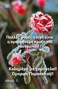 Good Morning Good Night, Wonderful Images, Wonders Of The World, The Good Place, Cool Photos, Greece, In This Moment, Winter, Pictures