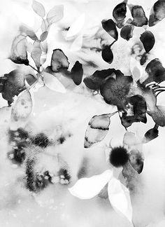Flora in Black +White Art Print