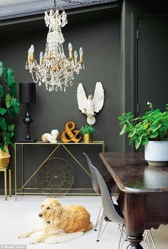 The dining room walls are painted in Madison Grey by Abigail Ahern (abigailahern.com), a deep colour out of which paler objects appear to leap, including a faux swan and the chandelier, both from Rockett St George