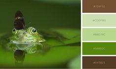 Friends for life! Colour palette