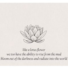 """97 Likes, 8 Comments - Brian Chavarria (@1brianbrain) on Instagram: """"✨Even being surrounded by mud, the lotus flower 🌺 still blossoms. Your soul is the LOTUS FLOWER🌺.…"""""""