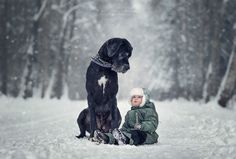 Incredible Photo Series Shows Huge Dogs Playing With Their Tiny Toddler Pals