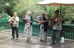 Smith's Fern Grotto Wailua River Cruise Photo Gallery: Hawaiian Wedding Song Performed at the Fern Grotto