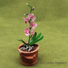Make Miniature Phalaenopsis Orchids in Dolls' House Scales