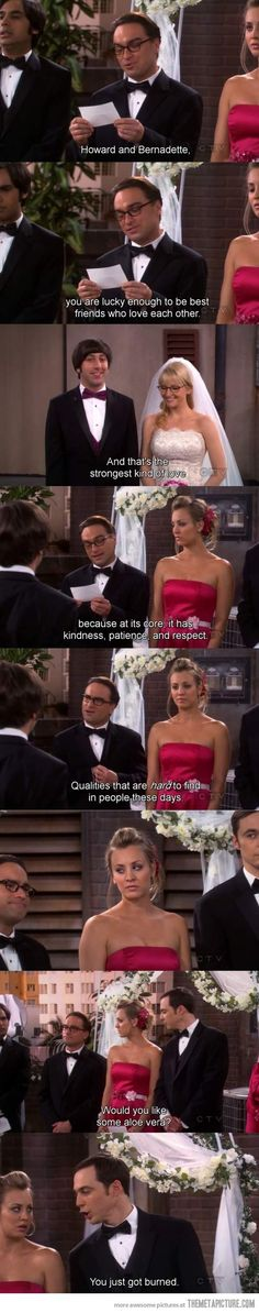 Big Bang Theory Funny | Probably the best moment on the Big Bang Theory... - The Meta Picture