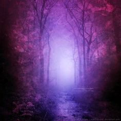 LesleyRose's Mystical Journey: Hold Fast Your Dreams