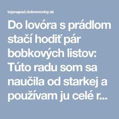 Do lovóra s prádlom stačí hodiť pár bobkových listov: Túto radu som sa naučila od starkej a používam ju celé roky, funguje zaručene! Nordic Interior