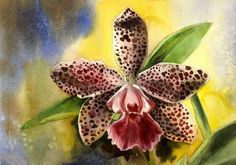 watercolor paintings of orchids | original watercolor orchid painting 8x11 via Etsy