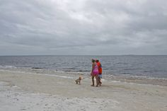 Carrabelle Beach RV resort in Florida gulf coast further east than Fort Walton Carrabelle Florida, Condos In Florida, Places In Florida, Florida Resorts, Campsite, Rv, Destinations, Coast, Beach