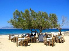 Paradiso Taverna, Agia Anna beach, Naxos Island, Greece. Amazing food, served at tables under a fairy light lit tree, looking out to sea!
