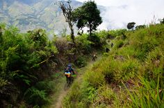 Mountain biking through the cloud forest on a fantastic trail in Ecuador, South America.