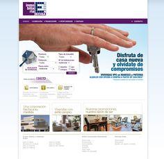 Ecisa Grupo Inmobiliario. CMS. Alicante. 2012.