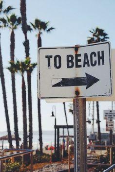 beach- ocean summer - palms