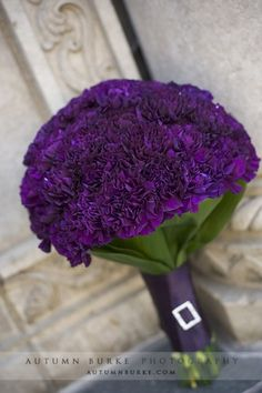purple carnations make a stunning bouquet - if you want flowers in this color!
