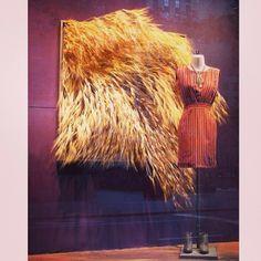 Traslada los campos de trigo a tu escaparate