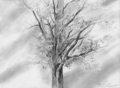 In the middle of the village ... Pencil on paper. Author: Witold Kubicha