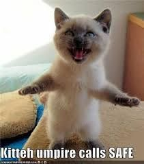 Kitteh umpire calls SAFE Don't Forget to Enter to win @Sarah Chintomby Chintomby Olmstead-Pitch National ♣ St Patrick's Day Contest ♧ - Win a Red Sox Blue Jays Getaway Package click on the picture to enter.