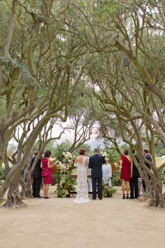 Outdoor Wedding - Ceremony in olive grove at Rancho La Zaca. Photo Aaron Delesie.