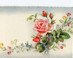 Roses and flowers, vintage French Postcard