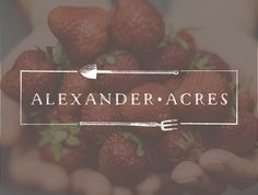Logo design for Alexander Acres! We just love how the lettering ties in with the structure of the gardening tools.