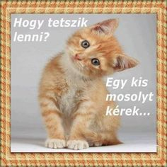 Hungarian Tattoo, Holidays And Events, Famous Quotes, Emoji, Good Morning, Diy And Crafts, About Me Blog, Geek Stuff, Cats