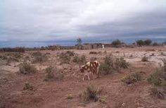 Desertifiación