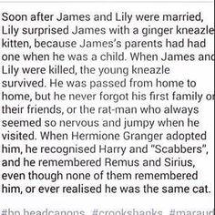 This explains a lot! Harry Potter Headcannon