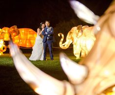 More from Jack and Bernice's gorgeous zoo wedding in Calgary.  #ferniephotographer #yyczoo #calgaryzoo #calgarywedding #yycwedding #weddingphotography #illuminasia