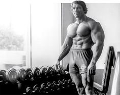 31 Arnold-Approved Training Tips