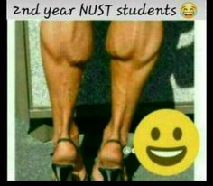 Mzansi Memes, Student, Videos