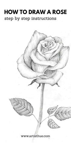 Realistic Rose Drawing, Rose Drawing Simple, Flower Art Drawing, Flower Drawing Tutorials, Painting & Drawing, Rose Sketch Easy, Roses Drawing Tutorial, Rose Flower Sketch, Pencil Art Drawings