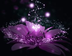 5th-Dimensional Crystalline Solar Violet Flame Invocation - The City of Shamballa - Reiki Attunement Social Network
